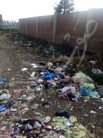بيوت كوم الفرج في أبوحمص (5)