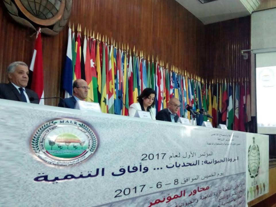 الدكتورة منى محرز نائب وزير الزراعة لشئون الثروة الحيوانية والداجنة والسمكية6