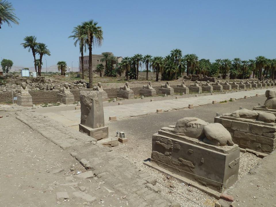 اللجنة الهندسية لمشروع إحياء طريق الكباش الفرعوني تواصل عملها بالأقصر (7)