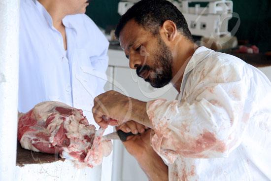 Mohamed-Fawzy-(4)