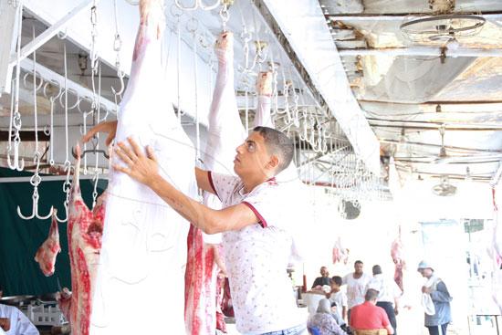 Mohamed-Fawzy-(6)