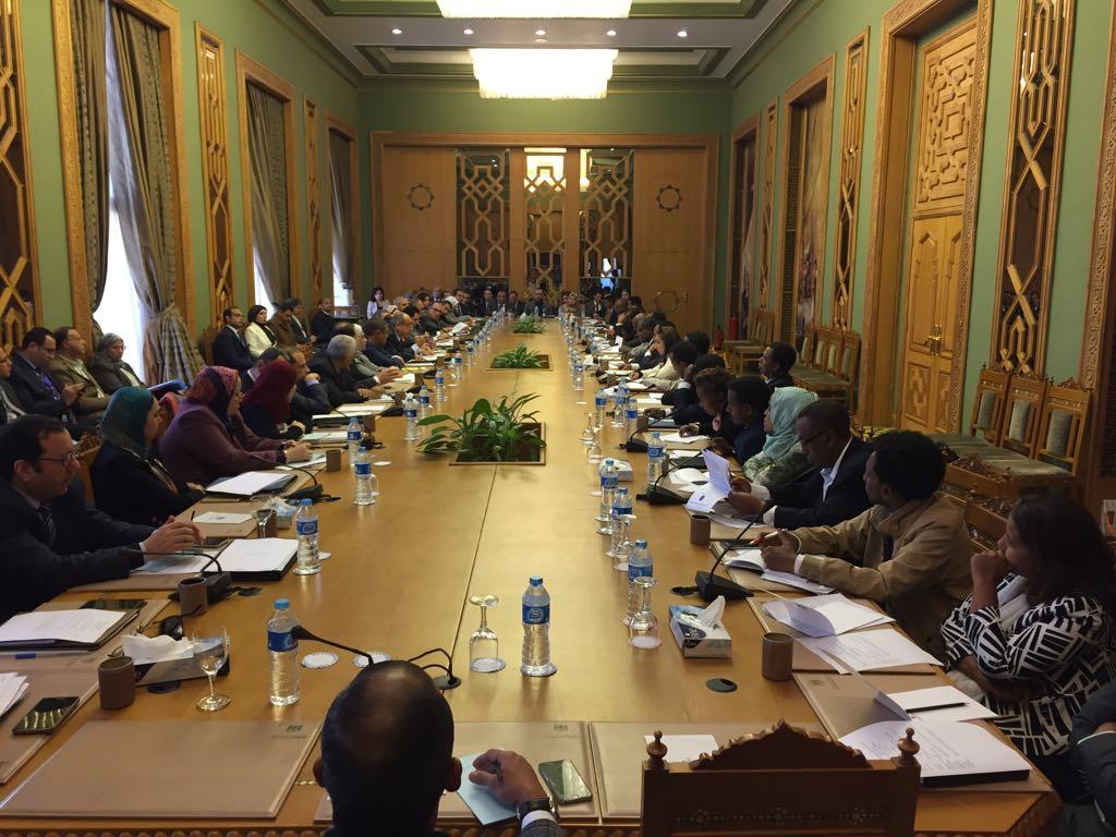 اللجنة المشتركة بين مصر وإثيوبيا