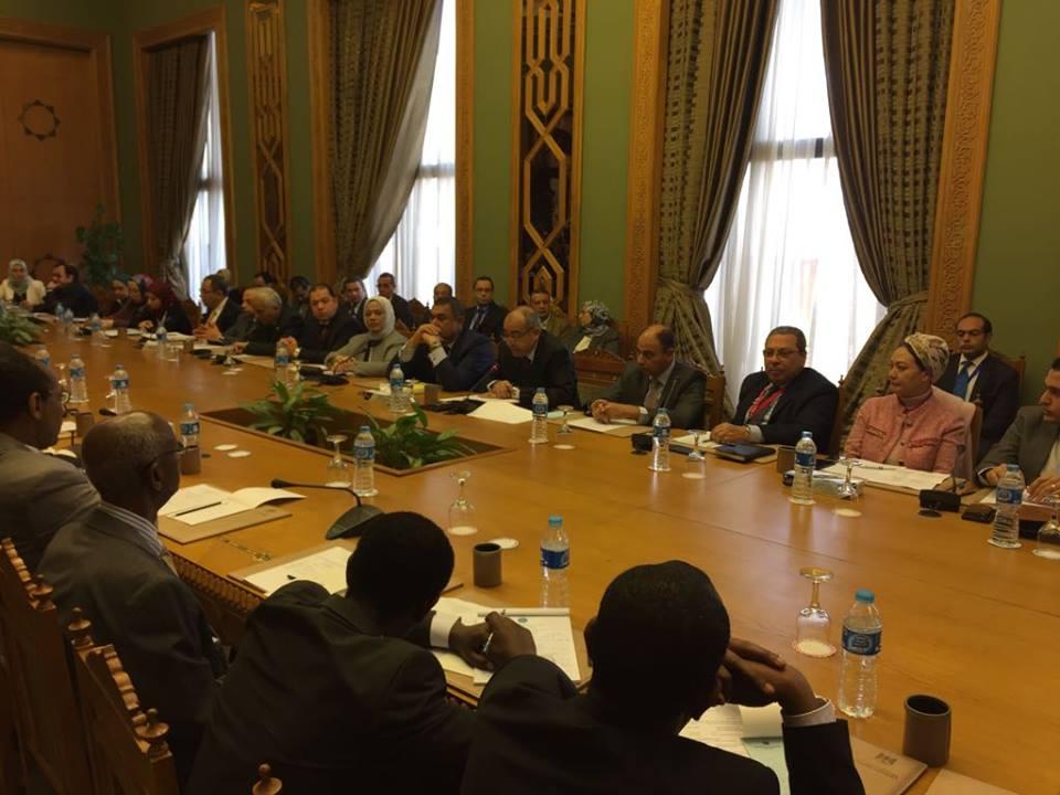 اللجنة المشتركة بين مصر وإثيوبيا 1