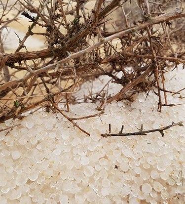 90796-برد-وثلوج-(7)