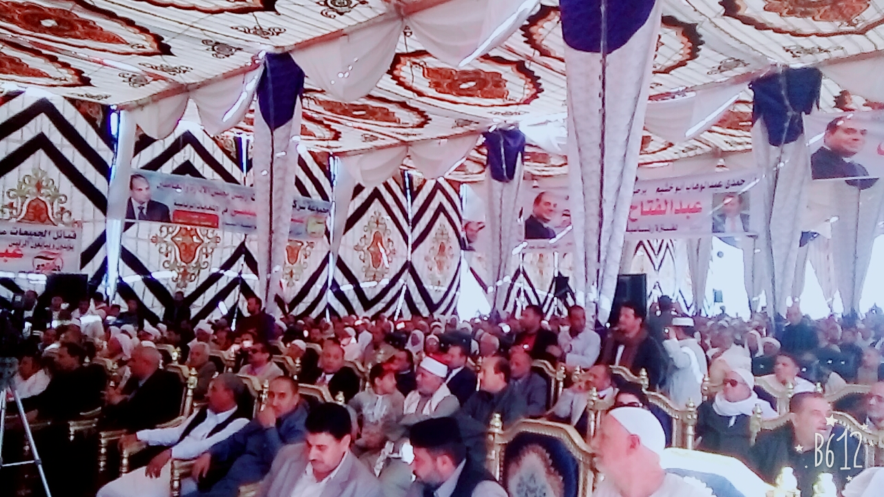 مؤتمرًا جماهيريًا لدعم الرئيس السيسى (4)