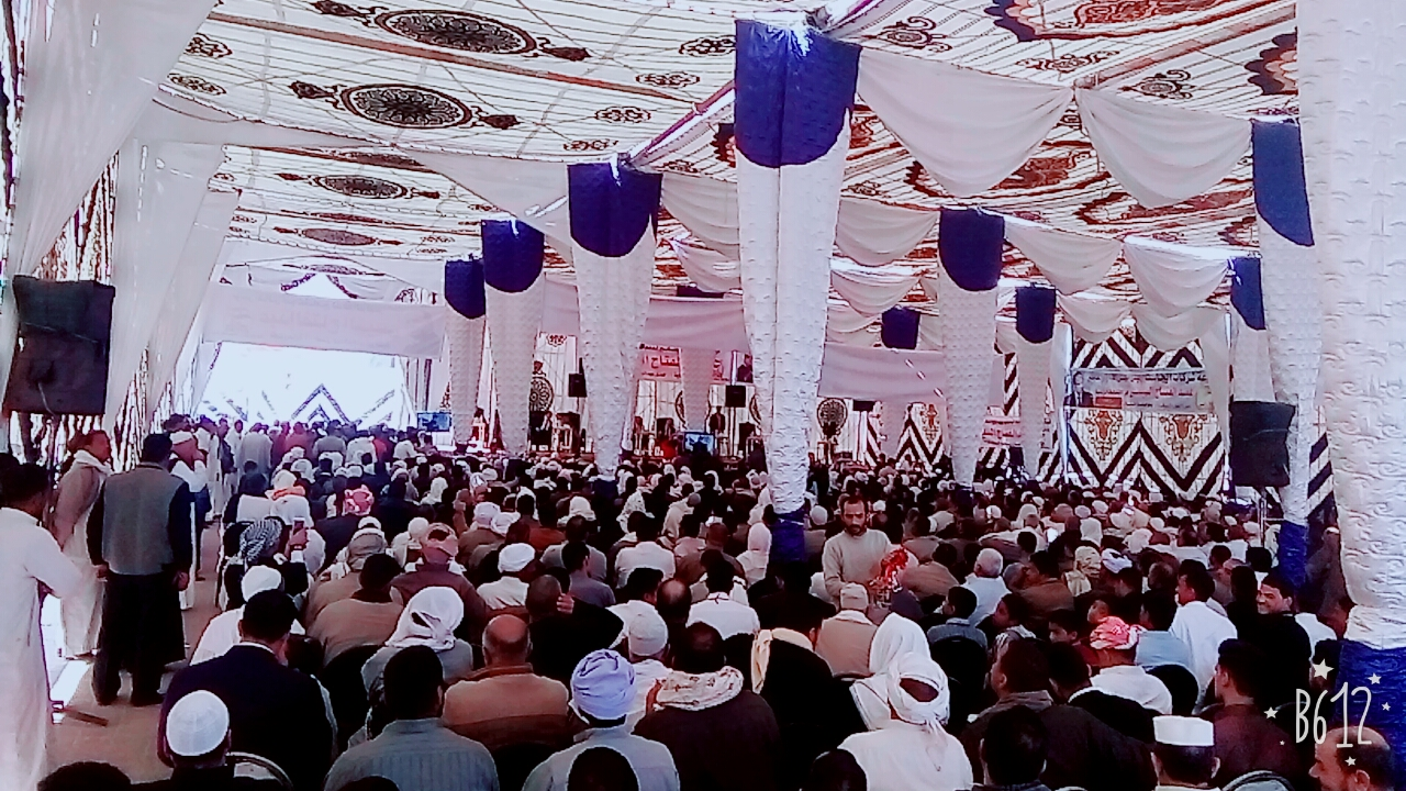 مؤتمرًا جماهيريًا لدعم الرئيس السيسى (2)