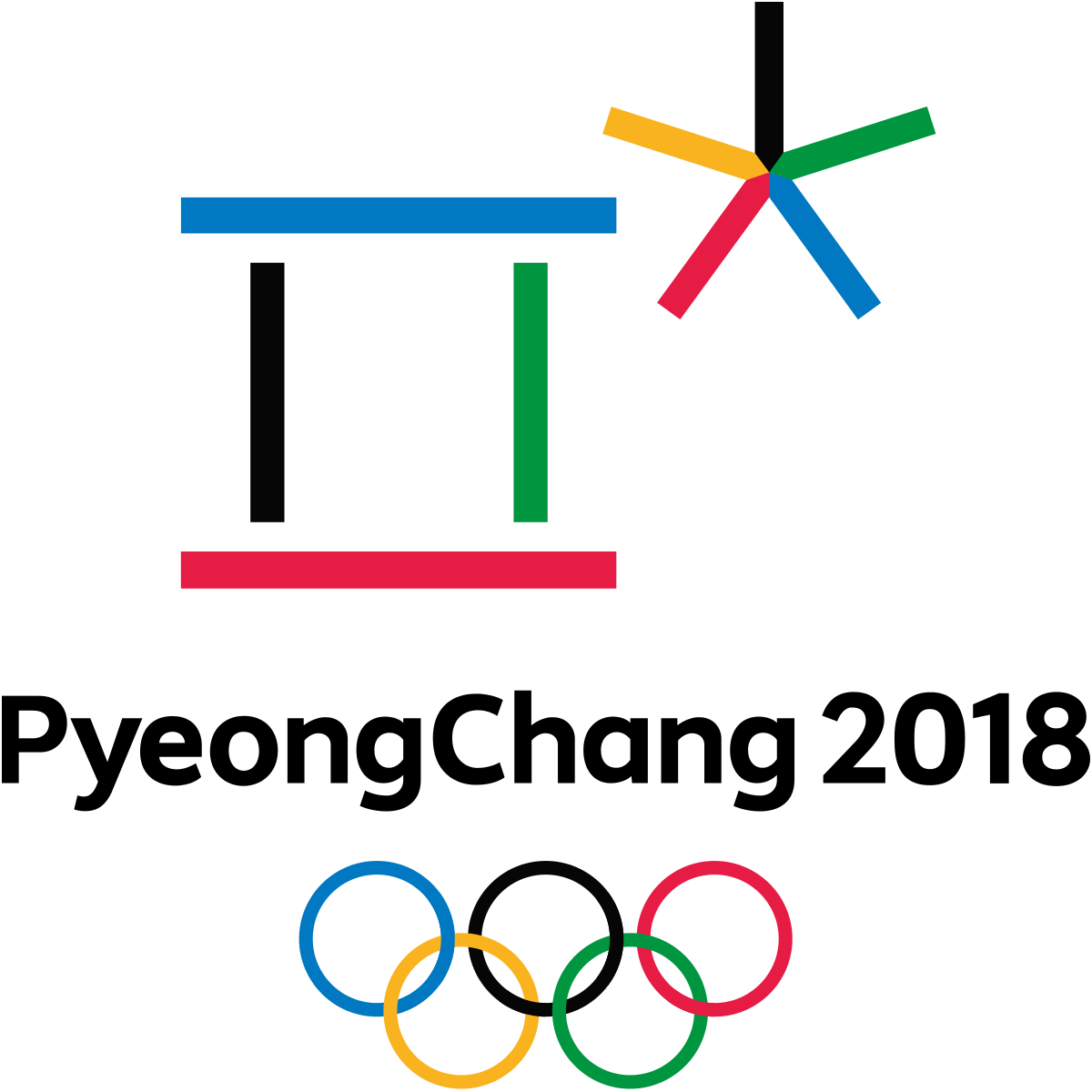 دورة الألعاب البارالمبية الشتوية