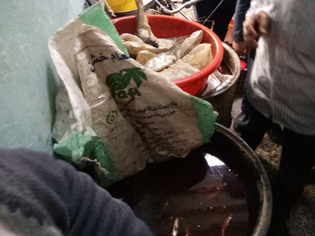 ضبط عدد 7 براميل للأسماك المملحه غير صالحة (4)