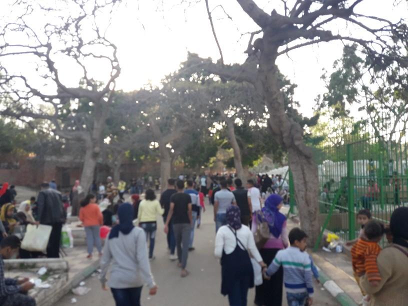احتفالات أعياد الربيع شم النسيم بالإسكندرية (24)