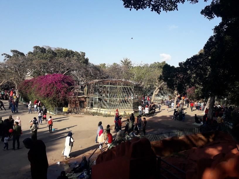احتفالات أعياد الربيع شم النسيم بالإسكندرية (16)