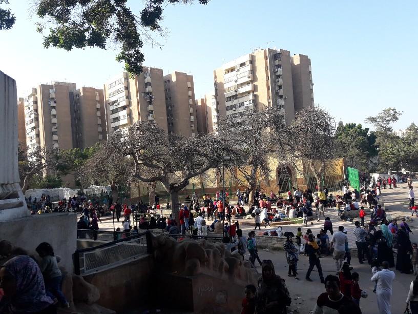 احتفالات أعياد الربيع شم النسيم بالإسكندرية (17)