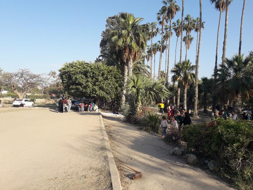 احتفالات أعياد الربيع شم النسيم بالإسكندرية (20)