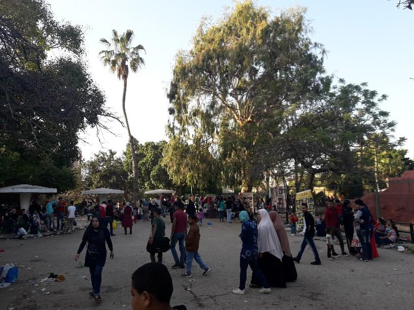 احتفالات أعياد الربيع شم النسيم بالإسكندرية (22)
