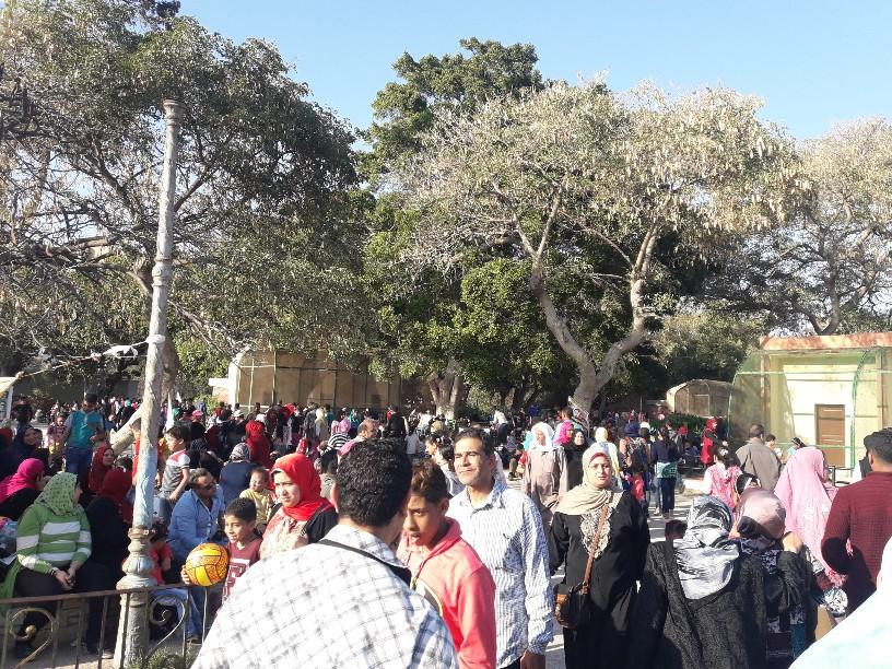 احتفالات أعياد الربيع شم النسيم بالإسكندرية (12)