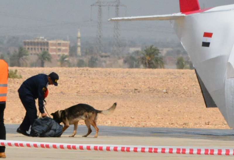 تجربة طوارئ واسعة النطاق بالمطار (31)