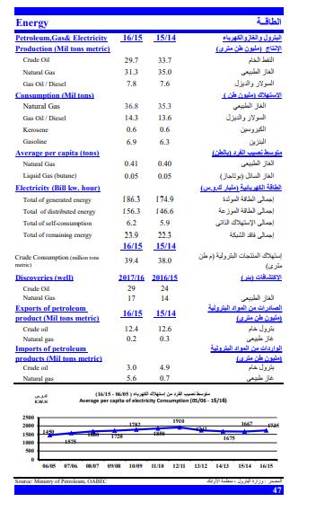 متوسطات نصيب الفرد من الطاقة في مصر