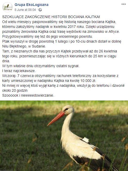 بولندي
