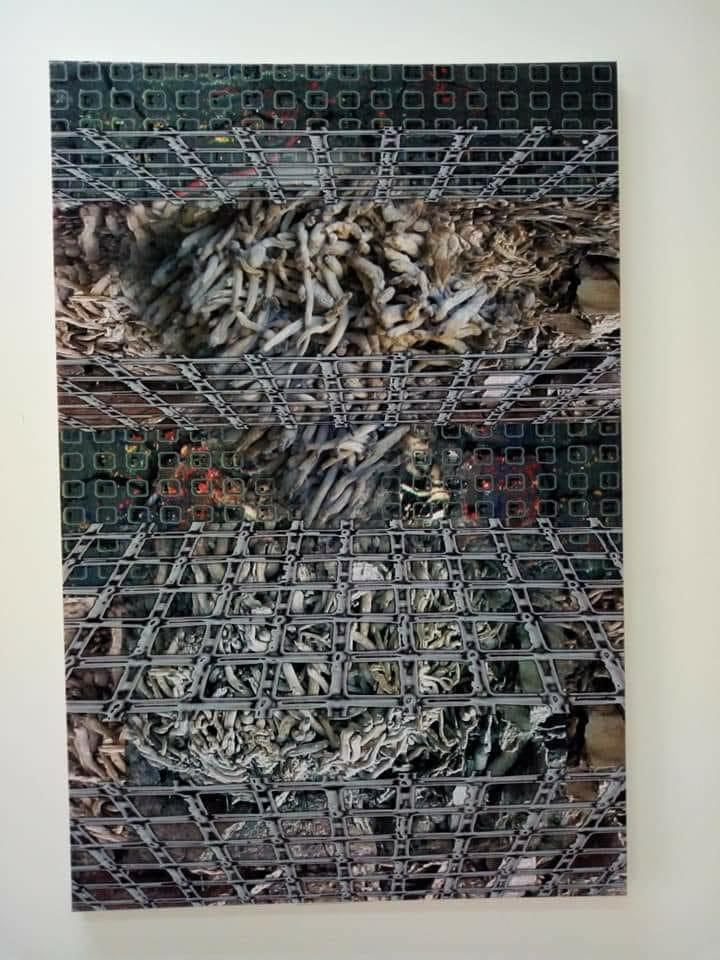 المعرض التشكيلي (3)