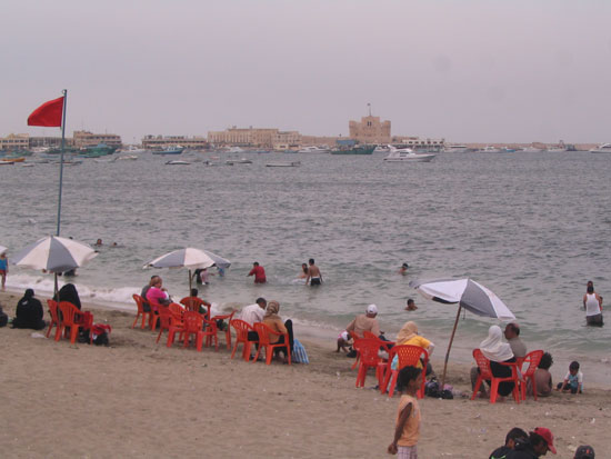شاطئ-النخيل-(5)