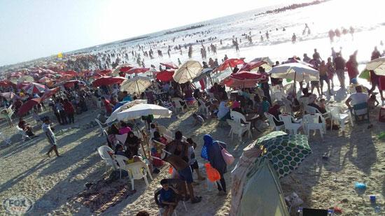 شاطئ-النخيل-(2)