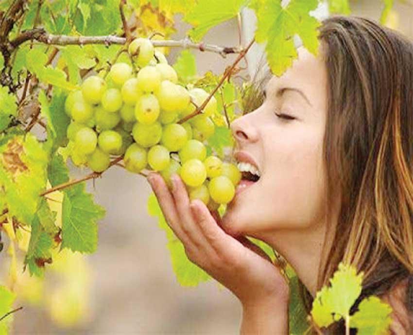تناول العنب