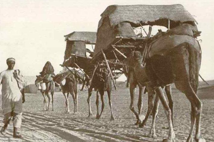قافلة الجمال بعد تنصيب الهوادج على ظهورها متجهة إلى مكة من جدة