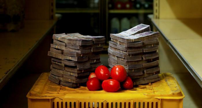 5 مليون سعر كيلو الطماطم