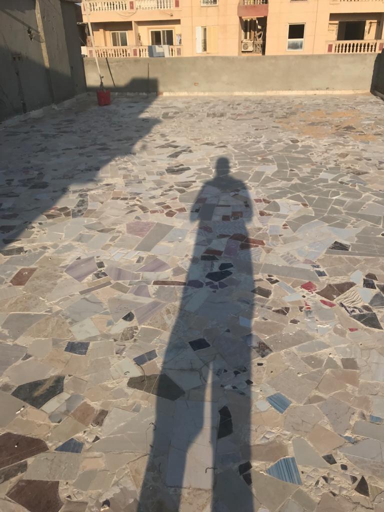 أزمة مشروع سيتي بالاس بالإسكندرية (108)