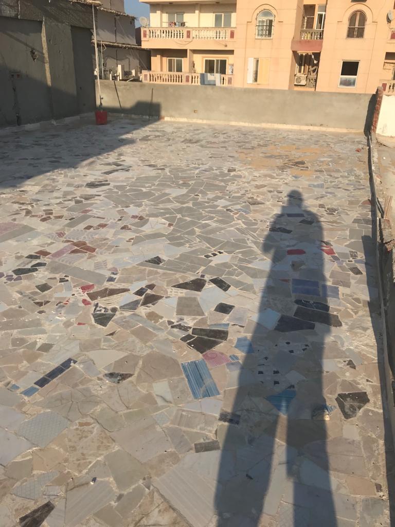 أزمة مشروع سيتي بالاس بالإسكندرية (115)
