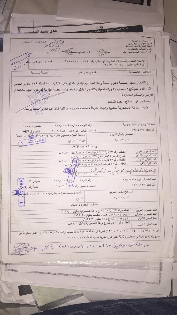 أزمة مشروع سيتي بالاس بالإسكندرية (91)