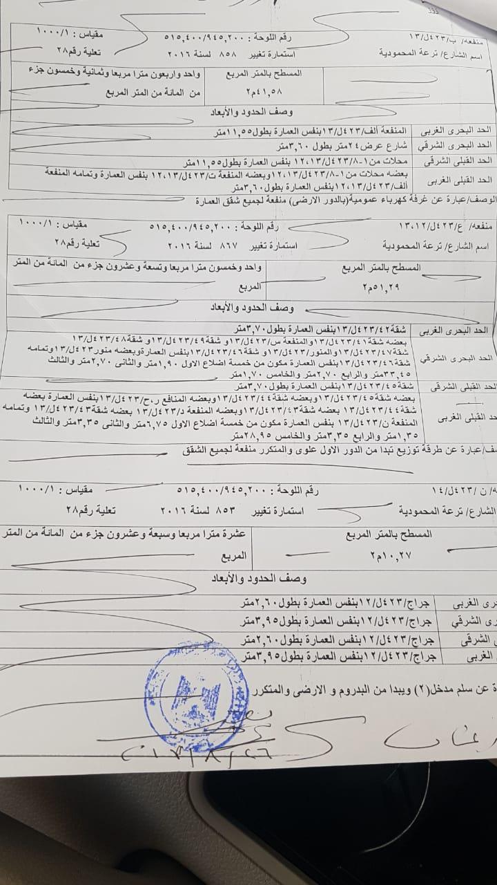 أزمة مشروع سيتي بالاس بالإسكندرية (47)