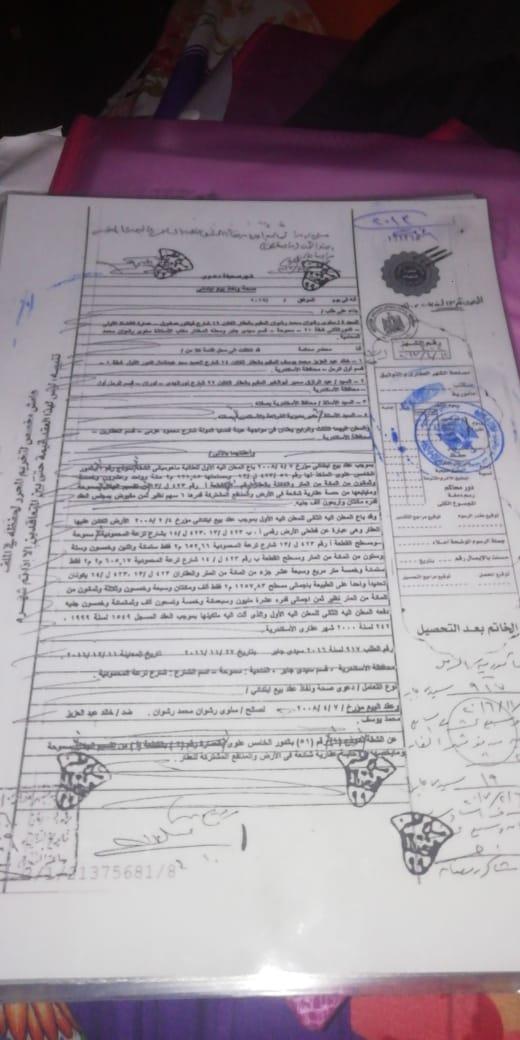 أزمة مشروع سيتي بالاس بالإسكندرية (137)