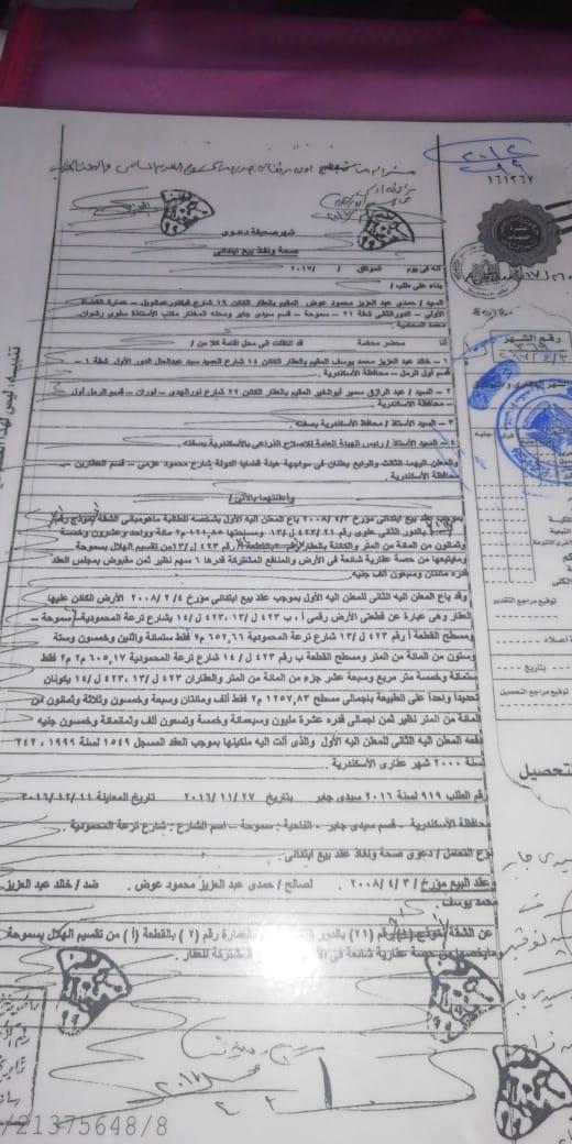 أزمة مشروع سيتي بالاس بالإسكندرية (136)