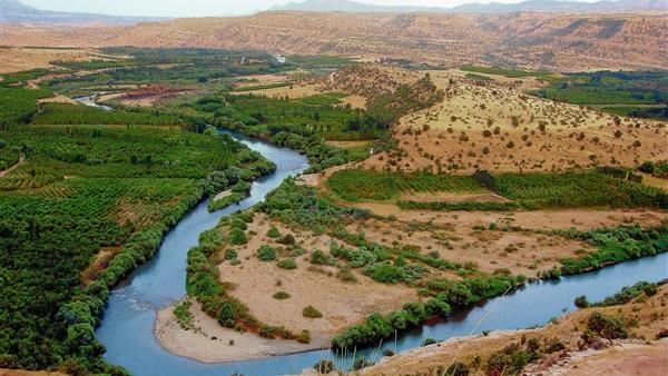 نهضة بلاد ما وراء النهر العلمية اعتمدت على اللغة العربية