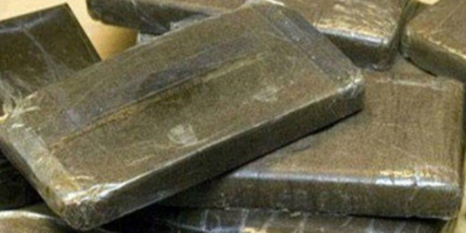 سقوط 18 تاجر مخدرات في حملة أمنية مكبرة بالقليوبية