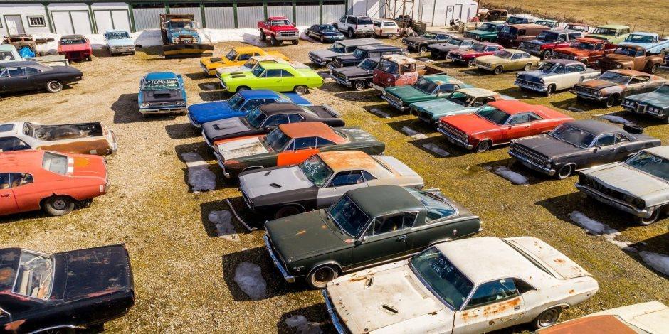 مهران: قطاع السيارات يمثل نحو 33% من محفظة الاقساط التأمينية بالمنطقة
