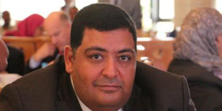 نائب مستقبل وطن: الرئيس السيسي يولي اهتمامًا كبيرًا بتطوير قطاع الكهرباء