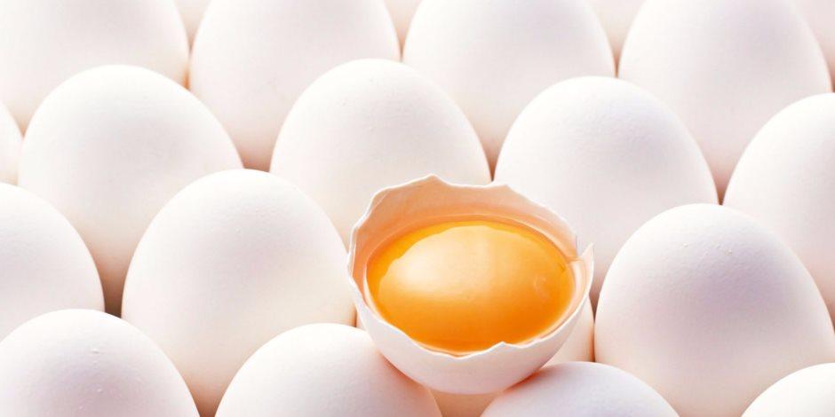 س&ج كيف تدخل بكتيريا السالمونيلا إلى البيض وطهيه صحياً