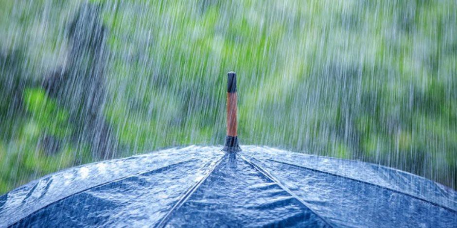 الأرصاد: فرص لسقوط الأمطار الخفيفة.. ورياح قد تصل للعاصفة بأسوان