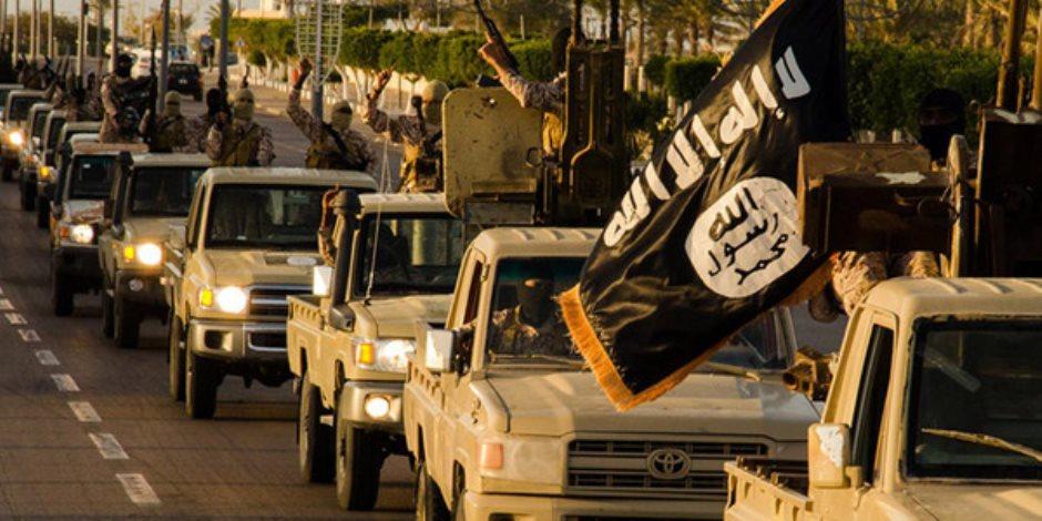 """مدير منطقة الزوية العراقية يطالب المنظمات الدولية بالتصدى """"داعش"""""""