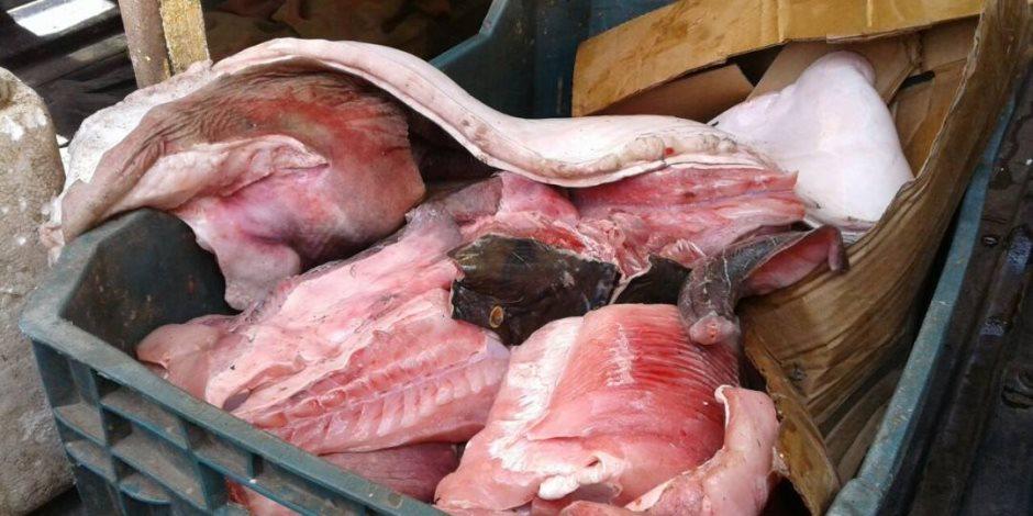 """""""احذر .. الطعام فيه سم قاتل"""".. أسماك فاسدة بسوق العبور .. و7 طن هياكل دواجن غير صالحة بالسلام"""
