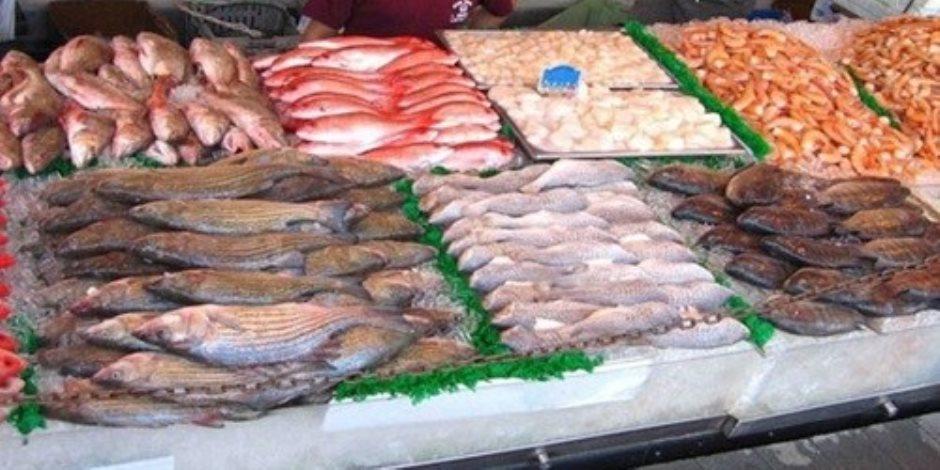 """""""بشرة خير"""".. رئيس شعبة الأسماك: انخفاض الأسعار 25% بسبب إنتاج بركة """"غليون"""""""