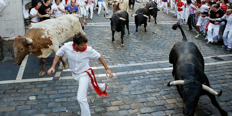 من الحب ما قتل.. لماذا تحمل الثيران في رقابها دماء الإسبان؟