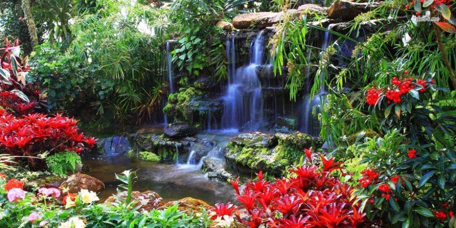 زيارة الحدائق واجبه تقلل التوتر وتخفض ضغط الدم.. نقدم  أفضل 10 حدائق في العالم