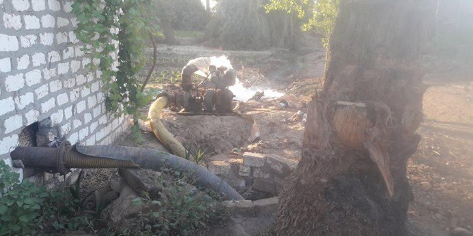 1500 فدان زراعات تموت عطشا فى النخيلة بأسيوط.. أين المسئولون (صور)