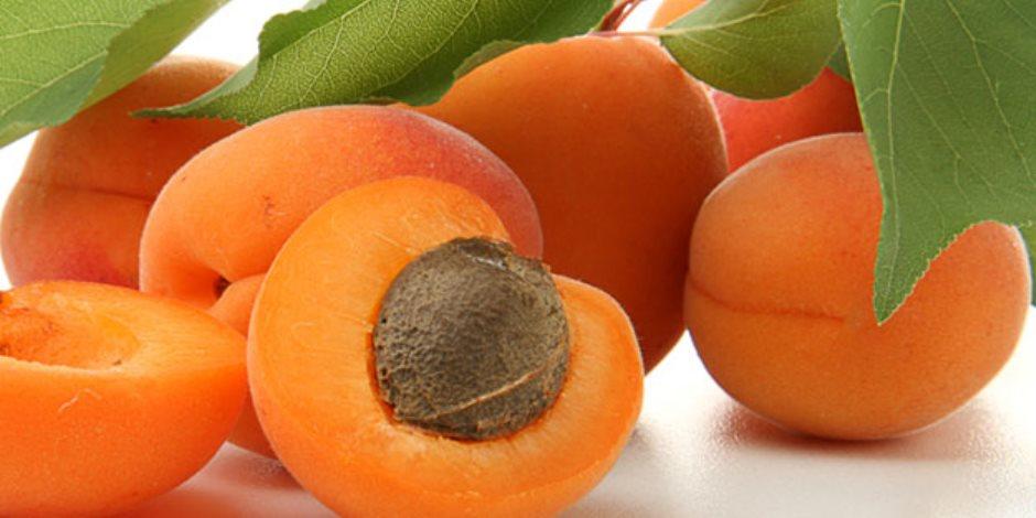 يحد من الكوليسترول ويعالج الحمى.. 10 فوائد  صحية لفاكهة المشمش
