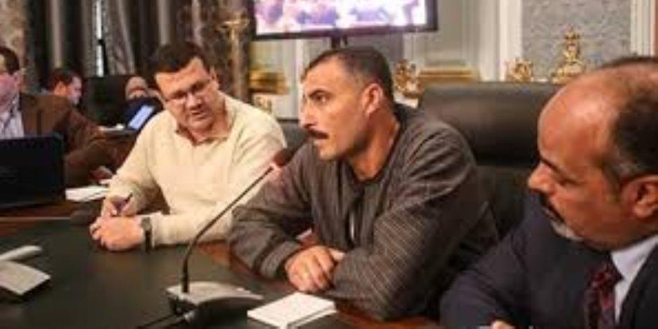برلماني يطالب بتكاتف الجهود لإعادة القطن المصري لمكانته المعروفة عالميًا