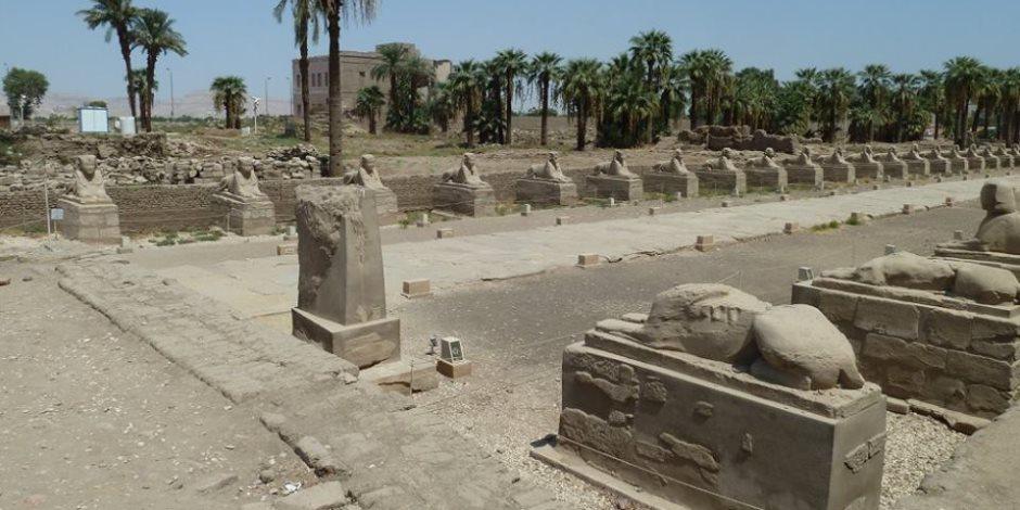 اللجنة الهندسية لمشروع إحياء «طريق الكباش الفرعوني» تواصل عملها بالأقصر