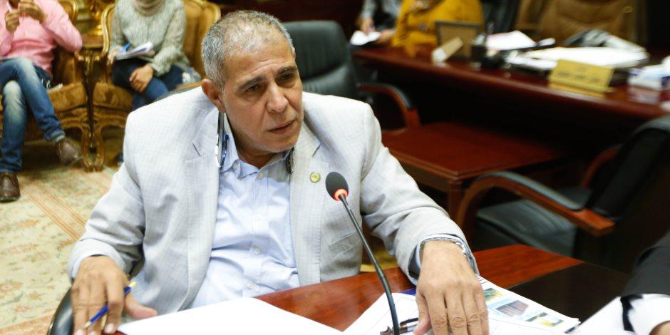 النائب أمين مسعود يطالب الحكومة بتسليط الضوء على إنجازات السيسي في العاصمة الإدارية الجديدة 