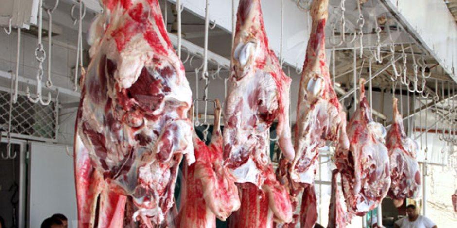«صوت الأمة» ترصد أسعار اللحوم قبل عيد الأضحى.. الركود يسود الأسواق (صور)